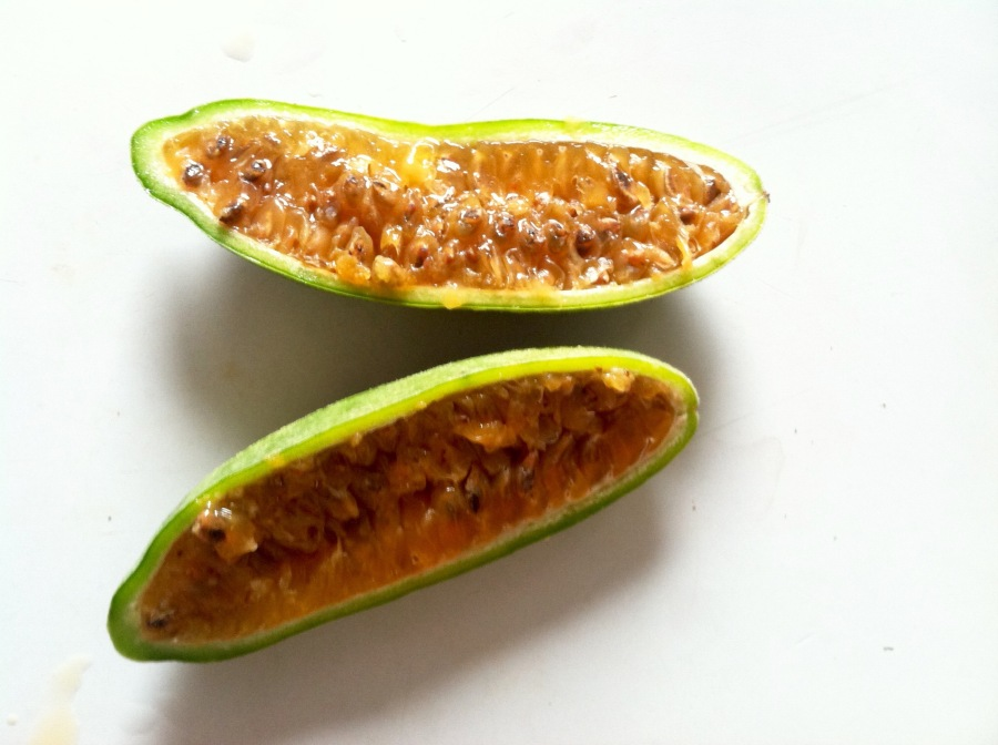 What's That Fruit:Curuba
