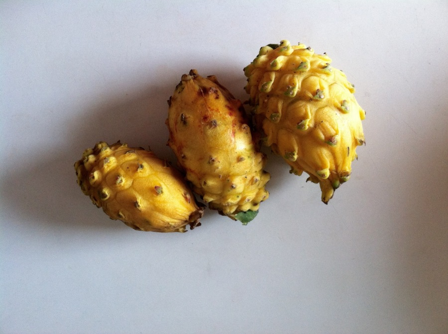 What's That Fruit: Pitaya