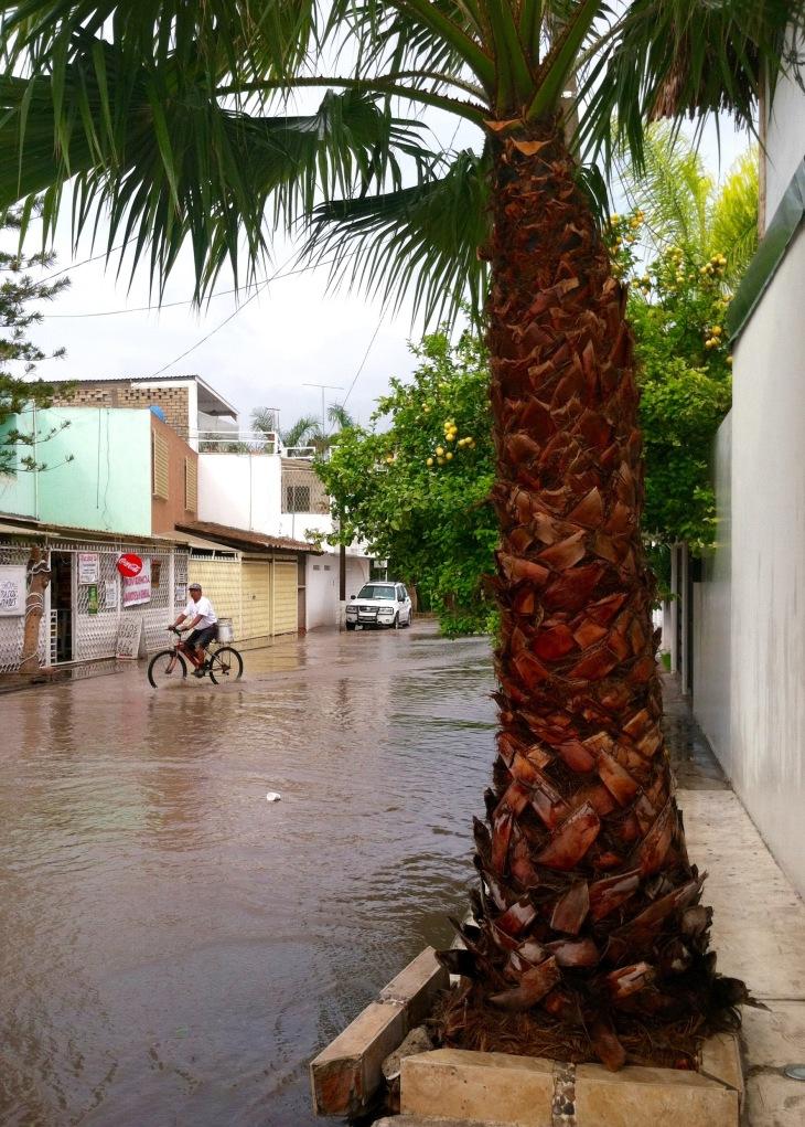 Tehuacan rain