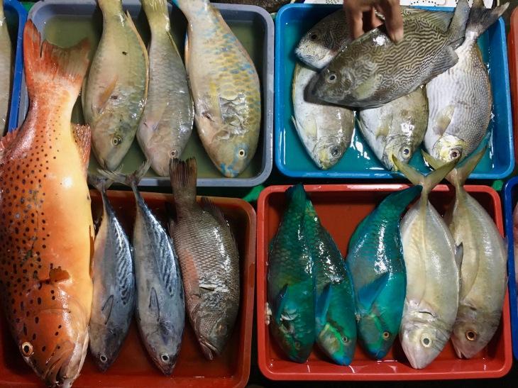 Karimunjawa fish market